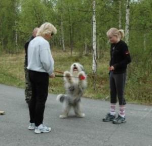 hundetrening-2006-maja-touch-03