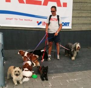 terje-med-hunde