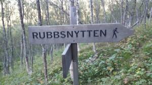 310814 Rubbsnytten6