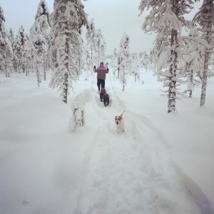 Serrejaur_ski